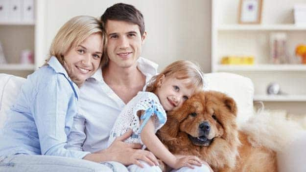 Wills & Trusts dog-young-family Direct Wills Westbury